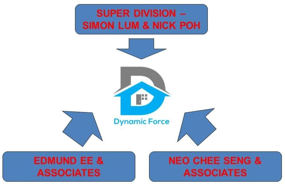 Dynamic Force Group - Merger